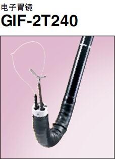 胃镜GIF-2T240