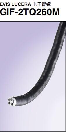 胃镜GIF-2TQ260M